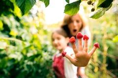 Femme supérieure avec le grandaughter faisant du jardinage dans le jardin d'arrière-cour Photographie stock libre de droits