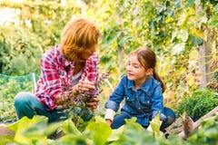 Femme supérieure avec le grandaughter faisant du jardinage dans le jardin d'arrière-cour Photographie stock