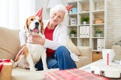 Femme supérieure de sourire avec le chien en vacances Images stock