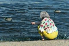 Femme supérieure en parc avec des canards Photo stock