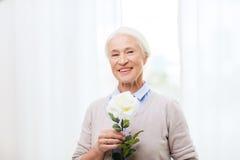 Femme supérieure heureuse avec la fleur rose à la maison Photo stock