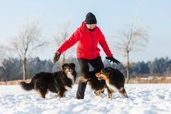 Femme supérieure jouant avec le chien dans la neige Photos libres de droits