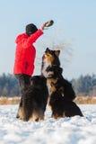 Femme supérieure jouant avec le chien dans la neige Image libre de droits