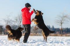 Femme supérieure jouant avec le chien dans la neige Images libres de droits