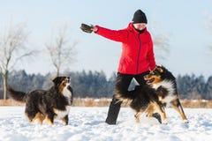 Femme supérieure jouant avec le chien dans la neige Photos stock
