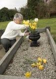 Femme supérieure mettant des fleurs sur une tombe Photo stock