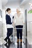 Femme supérieure regardant le physiothérapeute While Using Walker Photo libre de droits