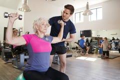 Femme supérieure s'exerçant sur la boule suisse avec des poids encouragé par l'entraîneur personnel In Gym photo stock