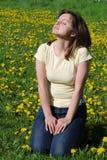 Femme sur des genoux dans le domaine des pissenlits Image libre de droits