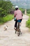 Femme sur la bicyclette avec le crabot Images libres de droits