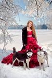 Femme sur la robe rouge avec des chiens Chiens de traîneau ou Malamute de fille de conte de fées Noël Photos stock