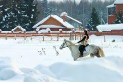 Femme sur le cheval Photographie stock