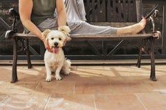 Femme sur un banc avec le chien Photo libre de droits