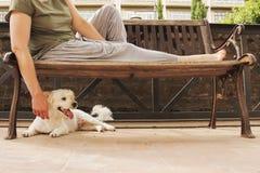 Femme sur un banc avec le chien Photos stock