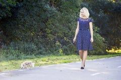 Femme sur une promenade de matin avec le chiwawa Images stock
