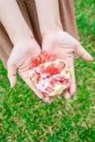 Femme tenant haut étroit de fruit (vertical) Image libre de droits