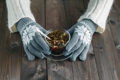 Femme tenant la tisane dans des gants d'hiver photographie stock