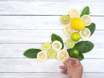 Femme tenant le citron frais sur la table blanche photo libre de droits