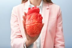 Femme tenant le modèle du coeur sur le fond clair Photos stock