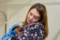 Femme tenant le petit chien humide Image stock