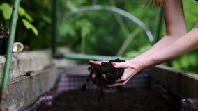 Femme tenant le sol fertile dans des ses mains banque de vidéos