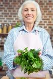 Femme tenant les herbes vertes Images stock