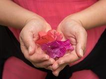 Femme tenant les pétales lilas et roses dans des ses mains en forme de coeur Photo stock