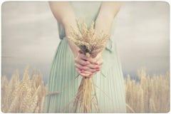 Femme tenant quelques transitoires de maïs photo stock