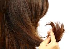 Femme tenant ses longs poils qui font des traitements de couleur Les poils ont peut-être la pointe fourchue de problème Si soin o Image stock