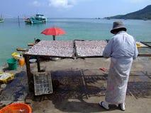 Femme thaï préparant des fruits de mer, Thaïlande Photos libres de droits