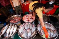 Femme thaïlandaise de vendeur avec des gants de latex nettoyant le poisson d'eau douce à Photographie stock