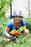 Femme travaillant dans le jardin Photographie stock libre de droits