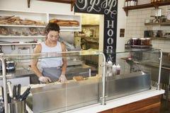 Femme travaillant derrière le compteur à une barre de sandwich images stock