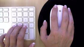Femme travaillant sur l'ordinateur clips vidéos