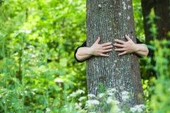 Femme ?treignant un tronc d'arbre dans une for?t photo libre de droits