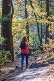 Femme trimardant dans les bois en automne photo libre de droits