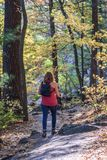 Femme trimardant dans les bois en automne photo stock