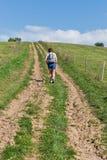 Femme trimardant sur la colline d'été près de Liptovsky Trnovec, Slovaquie image libre de droits