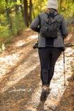 Femme trimardant sur le chemin en bois photo libre de droits