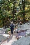 Femme trimardant sur le chemin en bois photographie stock