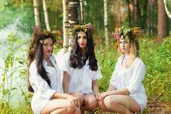 Femme trois avec du charme s'asseyant dans la forêt Images stock