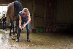 Femme vérifiant des sabots du ` s de cheval Image libre de droits
