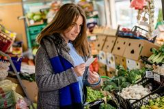 Femme vérifiant sa liste d'achats dans la boutique du ` s de marchand de légumes Images libres de droits