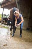Femme vérifiant ses sabots du ` s de cheval Photo stock