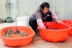 Femme vendant des crabes sur le marché de poissons Photo stock