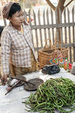 Femme vendant les haricots longs de yard au marché asiatique Bagan, Myanmar Photos stock
