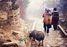 Femme vietnamienne marchant à Sapa Image stock