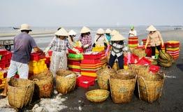 Femme vietnamienne travaillant à la plage Image libre de droits