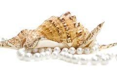 Femmes épousant des bijoux Long brin des perles roses de rivière La collection du mariage naturel perle des perles Macro photo d' photographie stock