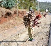 Femmes éthiopiennes portant un groupe de morceaux en bois Images libres de droits